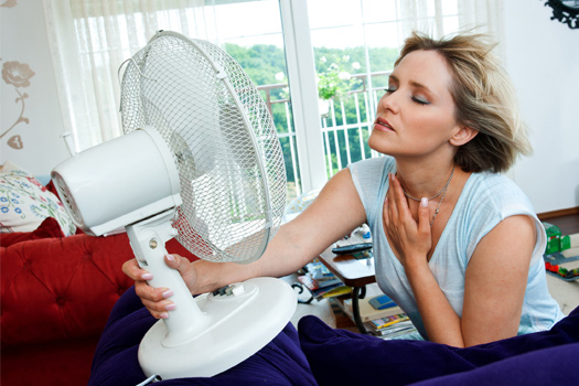 Air Conditioning Repair Services Fan