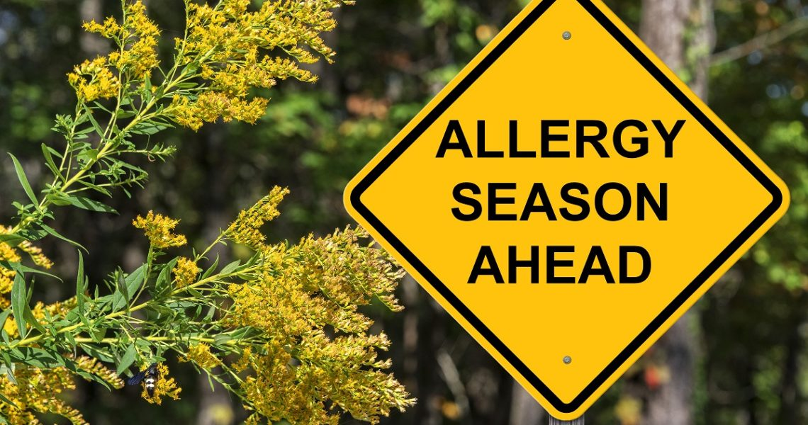 HVAC Repair Services Milton Top 10 Ways to Battle Fall Allergies in Your Home